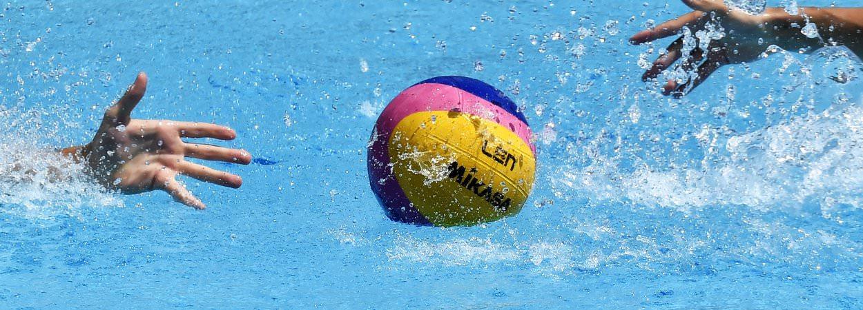 polo ball.jpg
